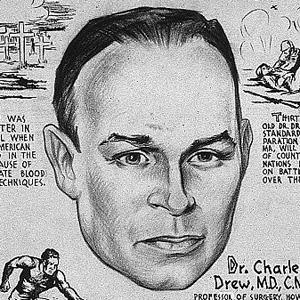 charles drew biography