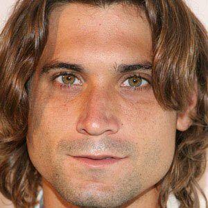David Ferrer 1 of 4