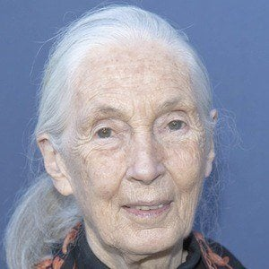 Jane Goodall 1 of 7