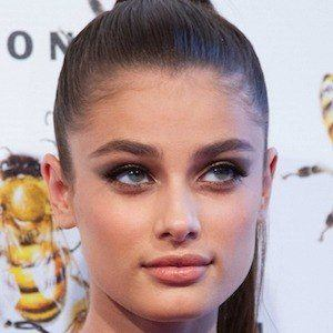 Taylor Hill Phone Number & WhatsApp & Email Address