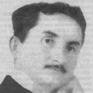Vojislav Ilic песник