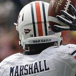 Nick Marshall Headshot