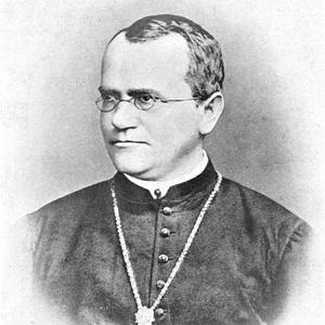 Gregor Mendel 1 of 2