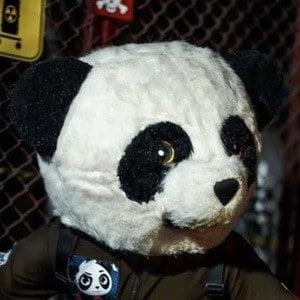 Panda Aventurero 1 of 5