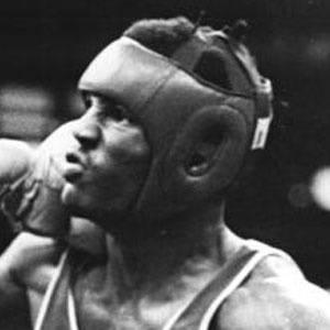Félix Savón Headshot