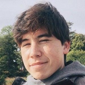 Senna 1 of 10