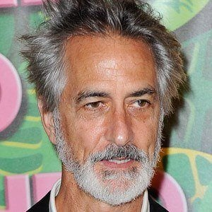 david strathairn house