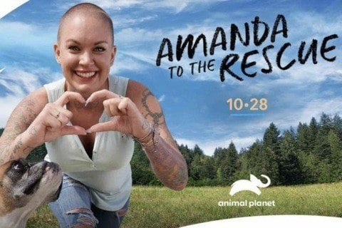 Amanda To The Rescue