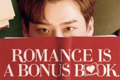 Romance Is a Bonus Book