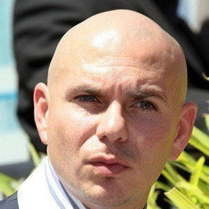 Pitbull 5 of 9