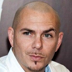 Pitbull 6 of 9