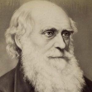 Charles Darwin 3 of 5