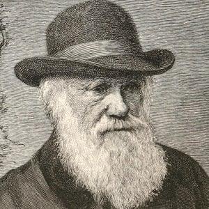 Charles Darwin 4 of 5