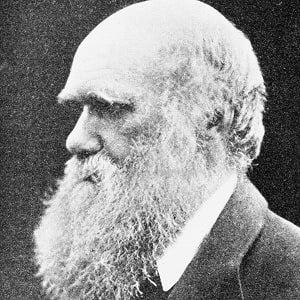 Charles Darwin 5 of 5