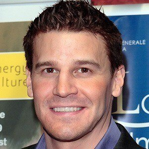 David Boreanaz 3 of 8