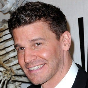 David Boreanaz 8 of 8