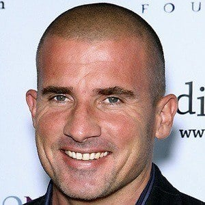 Dominic Purcell 4 of 10