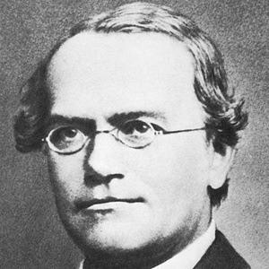 Gregor Mendel 2 of 2