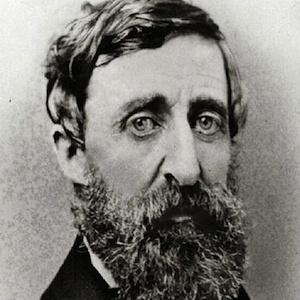 Henry David Thoreau 2 of 3