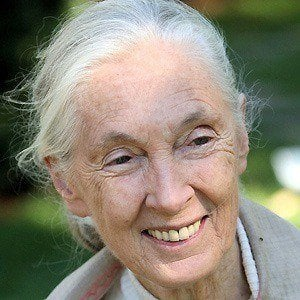 Jane Goodall 2 of 7