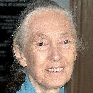 Jane Goodall 3 of 7