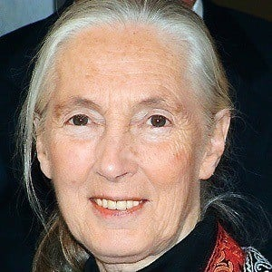 Jane Goodall 5 of 7