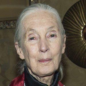 Jane Goodall 8 of 10