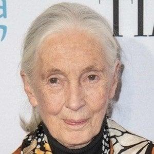 Jane Goodall 9 of 10