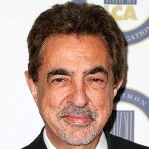 Joe Mantegna 7 of 10