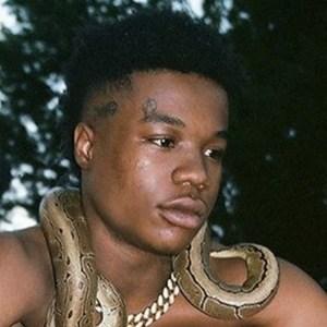 King B 2 of 6