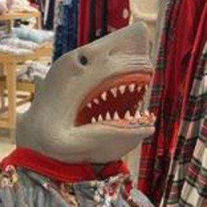 Shark Puppet Headshot 5 of 10