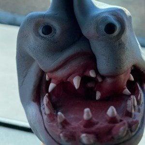 Shark Puppet Headshot 8 of 10