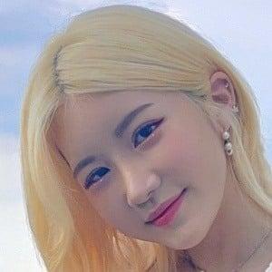 Sia Jiwoo Headshot 2 of 10