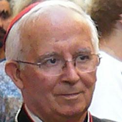 Antonio Canizares Llovera